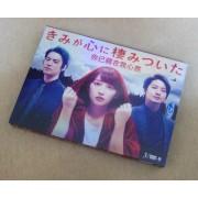 きみが心に棲みついた DVD-BOX