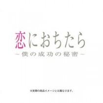 恋におちたら ~僕の成功の秘密~ DVD-BOX